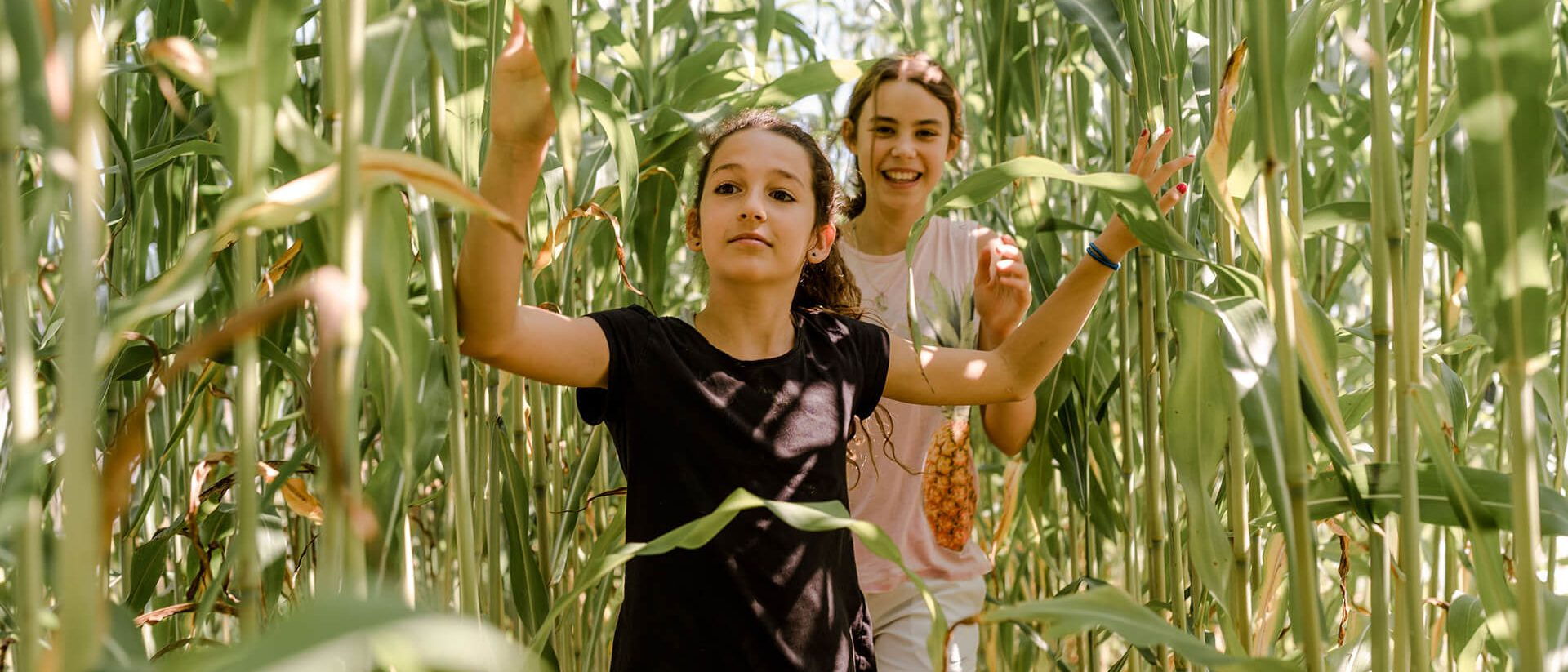 summer campers in a corn field