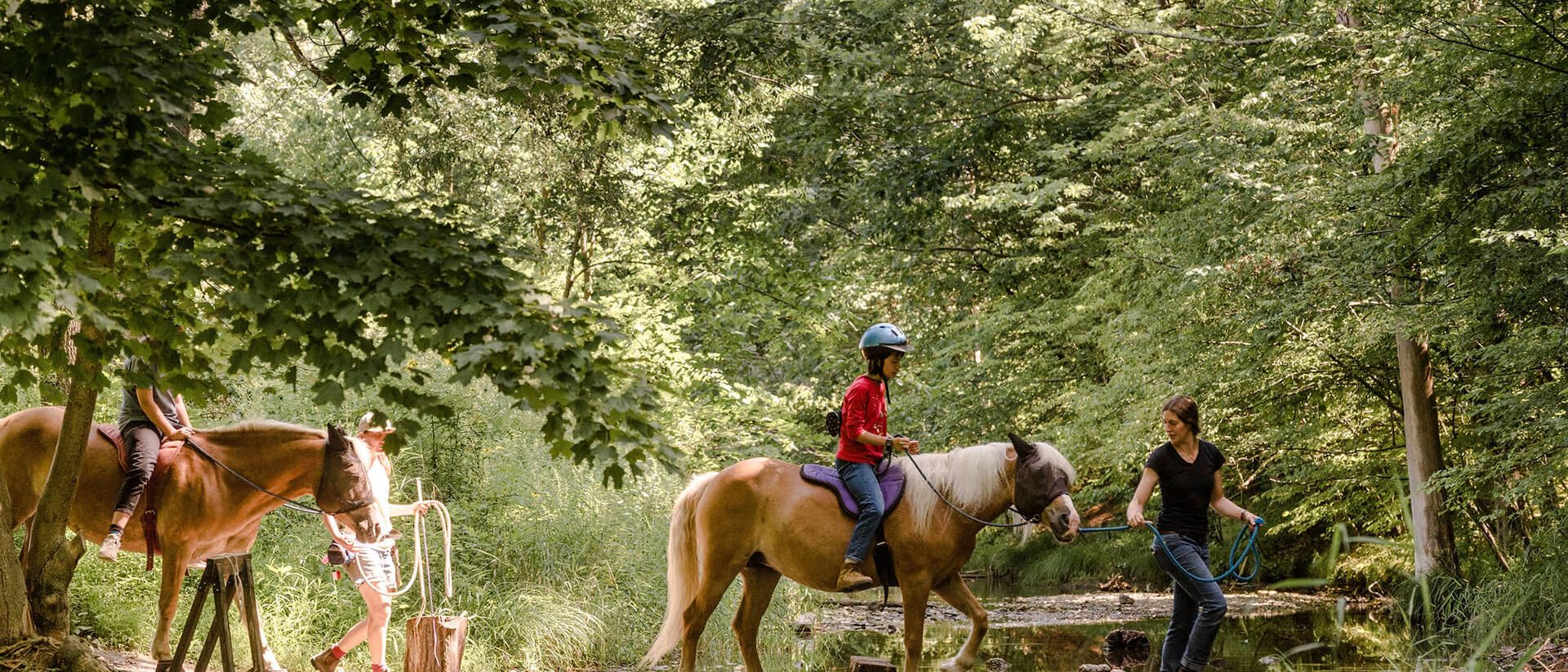 summer campers riding horses in woods