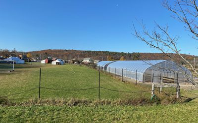 Hawthorne Valley Farm expands vegetable production with installation of greenhouses